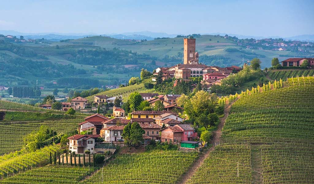 What to see in Barbaresco